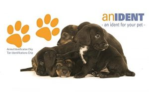 400x anident Animaux puce–Puce transpondeur ISO avec 276Allemande CODE Pays