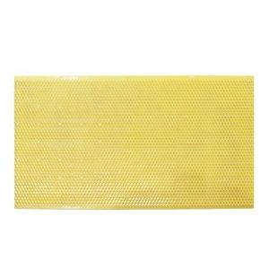 5pcs APIs Mellifera Plastique Peigne Fond de teint