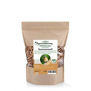 AniForte Poudre de® Wildlife–séché vers de farine 1L–Convient pour toute année de mangeoire à oiseaux et Wild