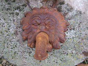antikas–Gargouille, bec, en fer, bec de Fontaine Neptun, anitik pour fontaine murale