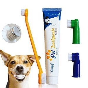Dentifrice pour chien, brosse à dents, brosses à doigts, dentifrice pour chiens et chats, plaque et tartare Kit de soins dentaires pour animaux de compagnie – saveur de boeuf