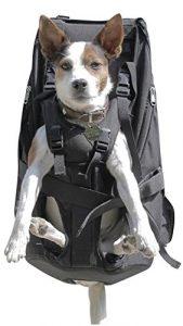 Dog Carrier Big Sac à dos pour chien Pet Carrier Sac à dos de transport pour chien