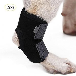 Easy-topbuy 2PC/Pack Dog Legs Brace Injury Anti-Lick Arthritis Fixation Restoration Auxiliary Strap Front Leg Wrap Leg Support Sheath