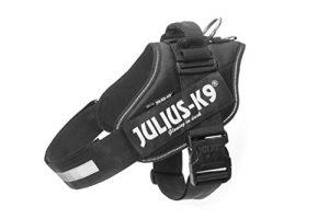 Julius K9 IDC Harnais pour chien Noir 3 (80-110 cm / 40-70 kg)