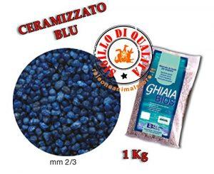 Sable Gravier ceramizzato Bleu Bleu fonds BIOS pour Aquarium 1kg