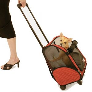 Snoozer Rouleau autour de 4 en 1 de transport Pet, Rouge et Noir, Medium