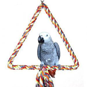 UEETEK Jouet Balançoire Oiseaux Corde pour Perroquets Oiseaux Perruches (Coloré)