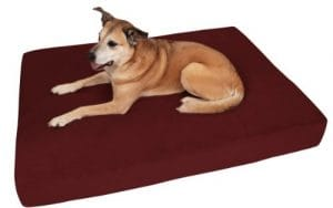 Big Barker 7 Pillow Top Orthopedic Dog Bed – Giant Size – 60 X 48 X 7 Inches – Burgundy – For Large and Extra Large Breed Dogs (Sleek Edition) by Big Barker