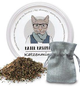 Cataire (herbe à chats) – 30 g avec sachet solide offert. Jouez avec votre boule de poil. Votre chat va vous aimer. La meilleure qualité au meilleur prix (coupé et séché)