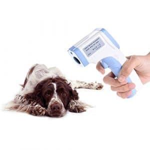 Decdeal Thermomètre infrarouge digital sans contact pour animal domestique, thermomètre vétérinaire pour chiens, chats, chevaux et autres animaux