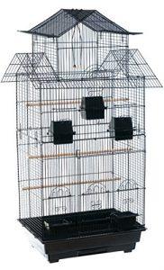 Grande perruche calopsitte élégante/cage à oiseaux