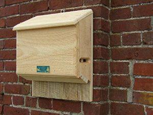Coveside «s Sunshine Bat House Motif chauve-souris