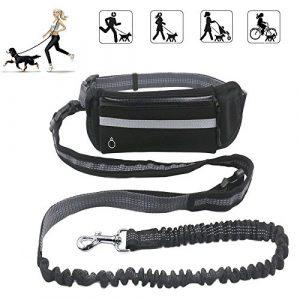 Dxable – Laisse mains-libres ergonomique de 1,6 m Avec sac à déjections, Idéale pour jogging et randonnées – Pour chiens de taille petite à moyenne – Ajustable