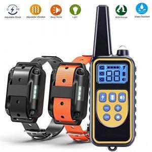 Feisui collier dressage chien-800m collier d'entraînement à distance avec 99 niveaux de chocs et vibrations, modes de lumière et de son standard, rechargeables et 100% imperméables, pour deux chiens
