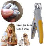 Majome Pet Products Tondeuse à Ongles pour Animal Domestique Chat Chien Ongles broyeurs Tondeuse Ciseaux avec éclairage LED