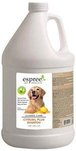Espree Shampooing citrusil Plus, 3,8l