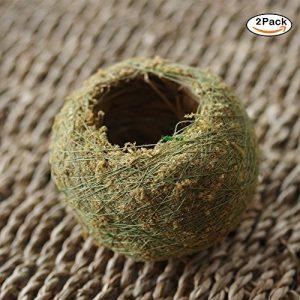 Naturel sec mousse Boule bonsaï Vert Sphaigne Substrat Boule de plantation (2pcs)