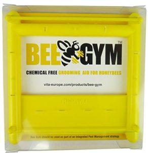BeeGym Dispositif anti-varroa destructor sans produit chimique pour utilisation en ruche et colonies