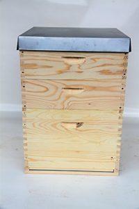 Dadant US Ruche 12 cadres avec 36petits cadres en bois, filés et à œillets, séparateur et grille à reine avec cadre en bois