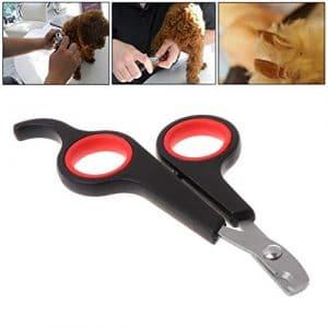 EcLife Pince à Ongles pour Chien ou Chat Griffe Tondeuse Toilettage Ciseaux Coupe ongle Fournitures pour Chien pour Chat Mignon