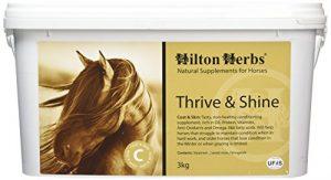 Hilton Herbs Vigueur et Brillance 3 kg Seau Complément Alimentaire Cheval Reprendre du Poil de la Bête !