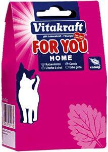 Vitakraft Catnip en Boîte pour Chat 20 g