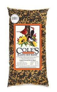 Coles oiseaux sauvages Products Inc–Wild Bird Food, Blazing Hot Blend de 10lbs.