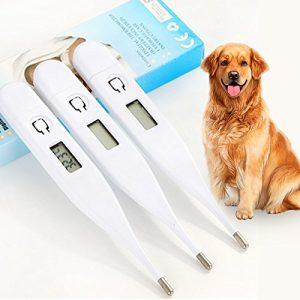 Crewell Veterinary testeur de Température Thermomètre Digital pour Animal Domestique Chien Chiot Chats Lapins Chatons