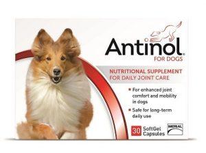 Fleurz Antinol Anti-inflammatoire 100% naturels avec sans Effets Secondaires 30Caches pour Chiens par Vetz Petz