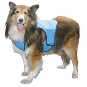 Gramercy COOL Gilet pour chiens
