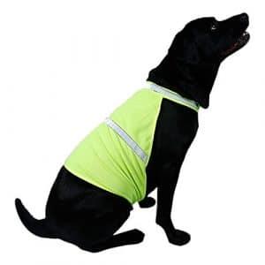 Hrph Animaux de compagnie Chien Gilet de Sécurité Fluorescent Réfléchissant Veste Sécurité Luminous Chien Vêtements Imperméable