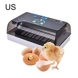 KILLYSUFUY Hachoir entièrement Automatique numérique pour Oeuf de Canard Oeuf de Dinde Oeuf d'œuf de Dinde Hachoir entièrement Automatique numérique pour œuf de Canard Oeuf de Dinde