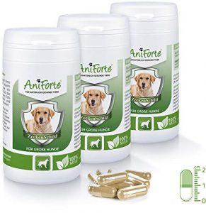 AniForte Poudre de Tique Bouclier Naturelles Tique 180Capsules économie d'Pack 3–Produit Naturel pour Chiens à partir DE 35–50kg–(de qualité ID: 506Z 05)