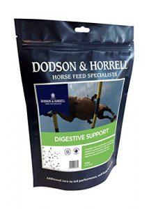 Dodson & horrell digestif Support, 450g