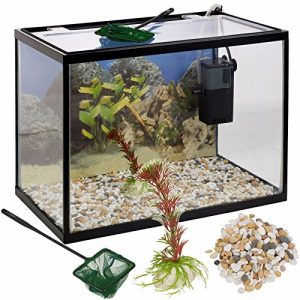 Generic NT Stones Kit de démarrage pour Aquarium 26 litres en Verre 26 lumières Kit de démarrage pour Aquarium