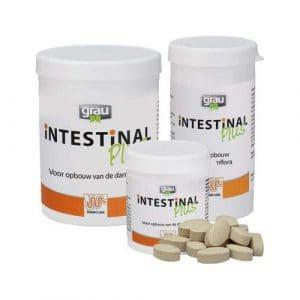 Grau Intestinal Plus – 300 Comprimés