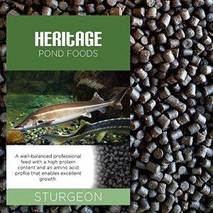 Heritage Nourriture en bouchées pour esturgeon, sterlet, tanche et carpe koï de qualité Premium qui s'enfonce rapidement dans l'eau – 4,5mm