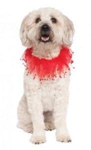 Rubies RUBIS fantaisie Company Fancy Rouge Collier pour animal domestique