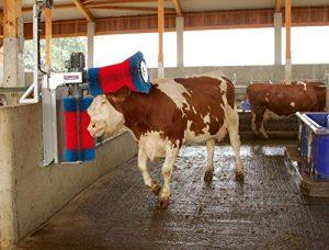 Eider HappyCow Duo Robot de Nettoyage à Vache pour Poils de Vache