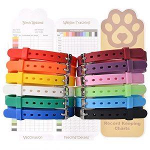 EXPAWLORER 12pcs/lot Puppy ID Colliers–Réglable et respectueuse en Silicone pour Animal Domestique