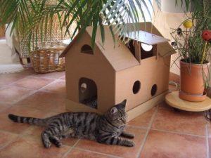 Niche en carton pour chat
