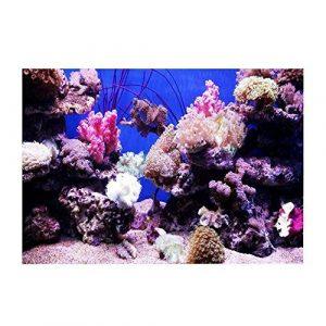 Fond Aquarium Ocean Fond Marin Coral Wallpaper HD 3D Effect Stickers du Monde sous-Marin Fond décoration pour Aquarium 91 * 50cm