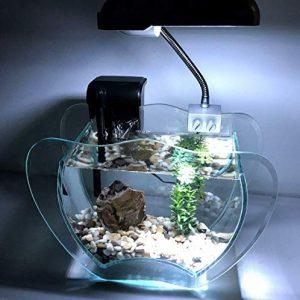 Generic D Lampe, Pompe à Roche, Filtre, ilter, Gravier, Lampe LED, kit Complet pour Aquarium co Gravier, ump, filte Grenat avec Lampe complète, Roche