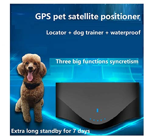 Avec la fonction d'entraînement de chien, microlocator d'animal familier, satellite de GPS, a perdu-preuve, imperméable à l'eau, le suivi et le collier d'envoi, qui est long et en attente