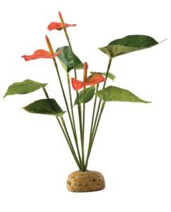 Exo terra Plante de Décoration pour Reptile Anthurium