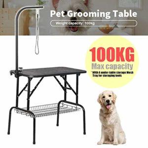 Generic Table de toilettage Portable pour Chat Groomi Groomi avec Bras réglable en Acier Noir