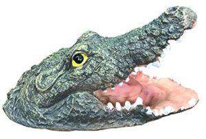 Selections Tête de Crocodile Flottante avec mâchoires Ouvertes