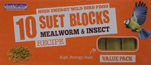 Suet to Go suif pour Passer au Berry et Les Blocs de Bugs Pack of 10