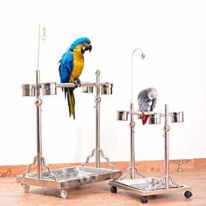 Zengqhui Support d'oiseau Oiseau de Stand Station d'alimentation des Oiseaux en métal télescopique Convient for Les Grandes et Moyennes Perroquets (Couleur : Silver, Size : 51x93cm)
