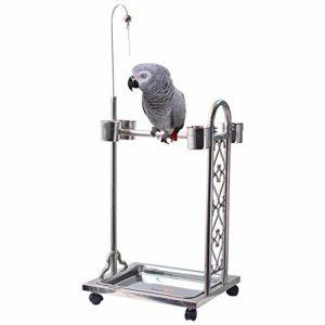 Zengqhui Support d'oiseau Station de l'alimentation des Oiseaux en métal Convient for Perroquet Gris Moyen et Grand Perroquet (Couleur : Silver, Size : 66X45X100cm)